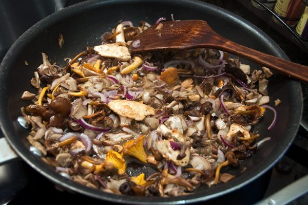 wild mushrooms in cream sauce recipe